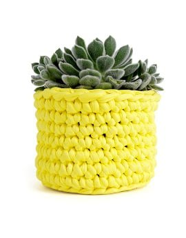 Wool and the Gang DIY Macrame Twiggy Pot in yellow with green succulent