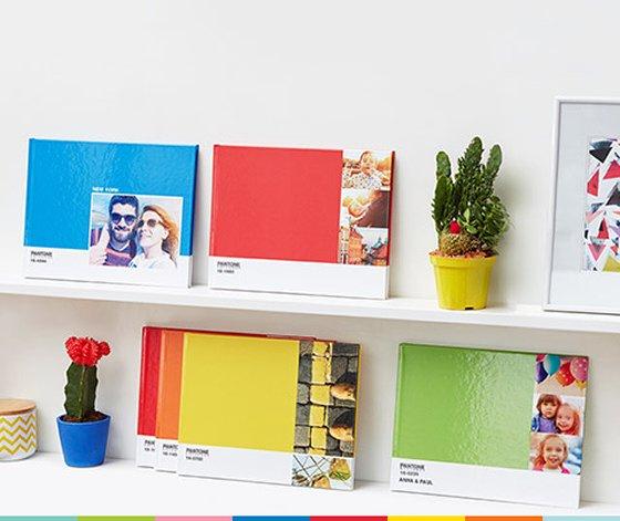 Brightly coloured Photobox Pantone Photobooks ranged on white shelves with fun coloured cacti