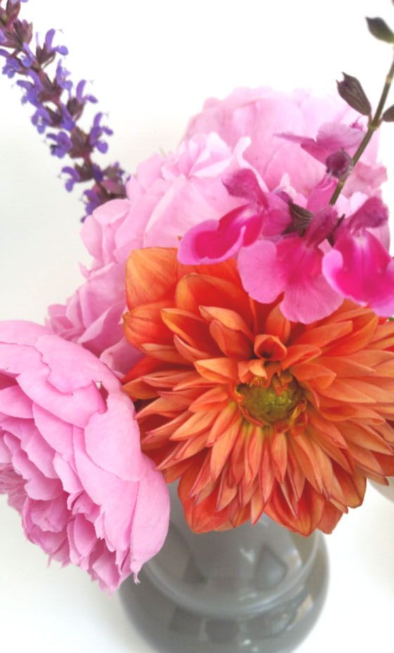 orange dahlia with pink english roses and salvia