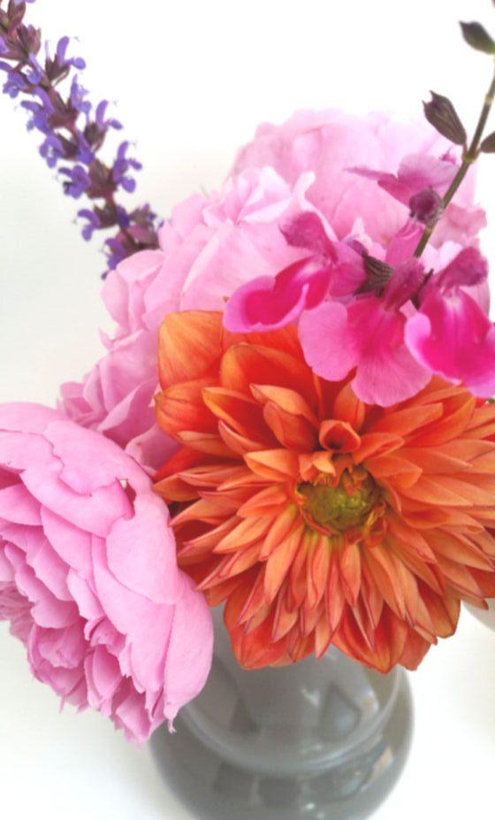 orange dahlia with pink english roses and salvia