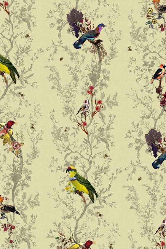 Wallpaper Designs With Birds : New wallpaper designs from timorous beasties colourful