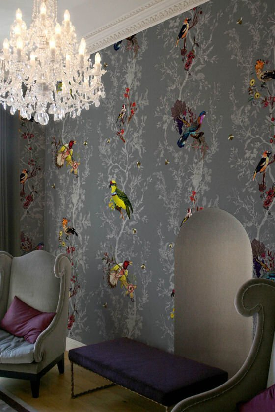 New wallpaper designs from timorous beasties colourful for Wallpaper lounge feature wall
