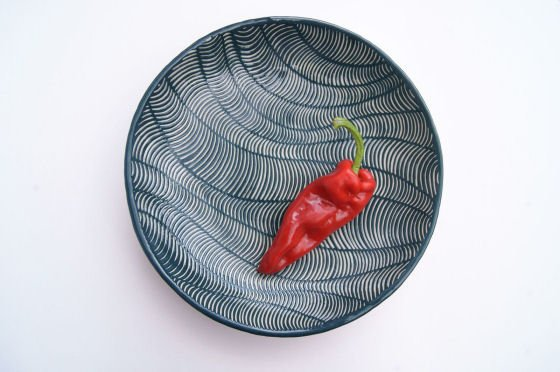 Blue and white ceramics with red chiili pepper by Judit Esztergomi