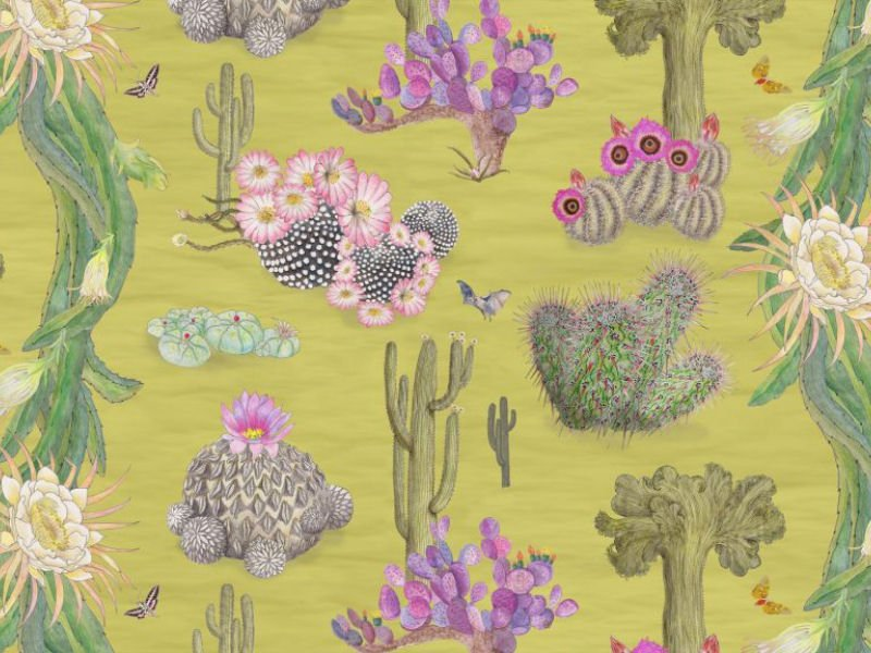 Newton Paisley textiles and wallpapers – illustrations of endangered beauty