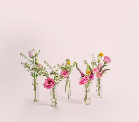 POSIES FROM BLOOM & WILD