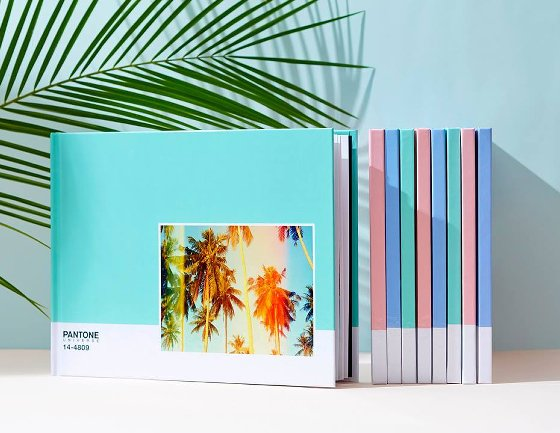 Photobox Pantone Photobooks in pastel colours displayed against turquoise wall with palm front
