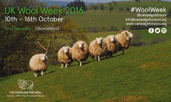 UK Wool Week banner with sheep in field