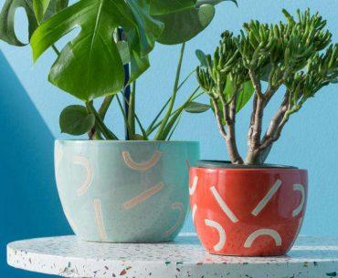 colourful garden accessories