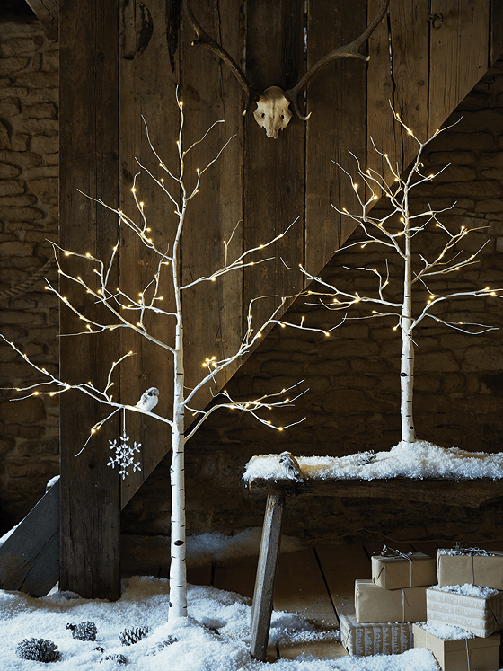 indoor-outdoor-light-up-birch-trees-alt