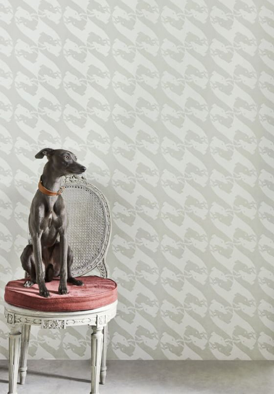 the-dogs-wallpaper-barneby-gates-barneby-gates-clippings-399451